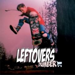 leftover-dumber_10-e1403889683418