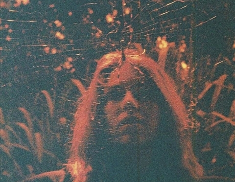 """""""Peripheral Vision"""" by Turnover"""