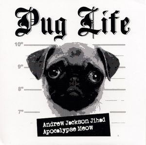 19 dogs that look totally badass on album covers