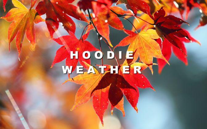 Hoodie Weather: tutto l'occorrente per godersi l'autunno