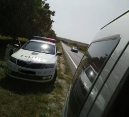 wasa-polizia