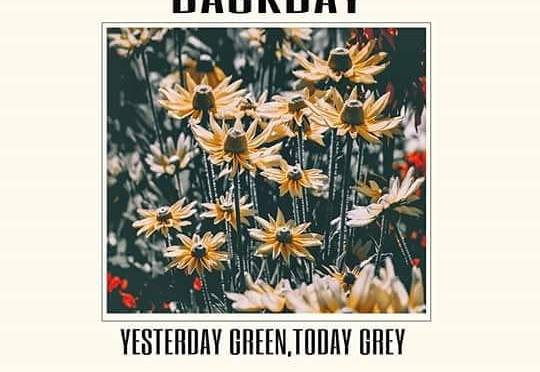 """REVIEW: """"Yesterday Green, Today Grey"""" by Backbay"""