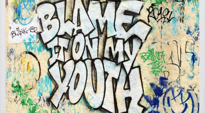 blink-182 blame it ony my youth
